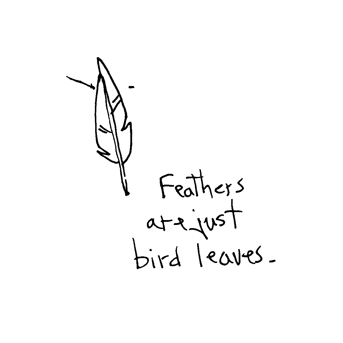 bird leaves cartoon doodle